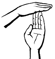 hand signal technical point