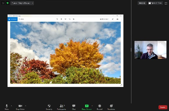Zoom - screen share image - just right - Autumn leaves - participants view
