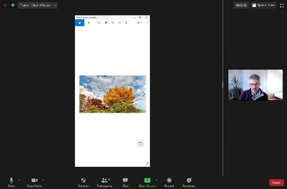 Zoom - screen share image - vertical space - Autumn leaves - participants view