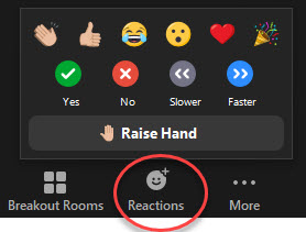 Zoom Nonverbal feedback options